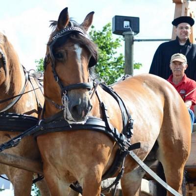 Pfarrer Kautz mit Glocke und Pferden
