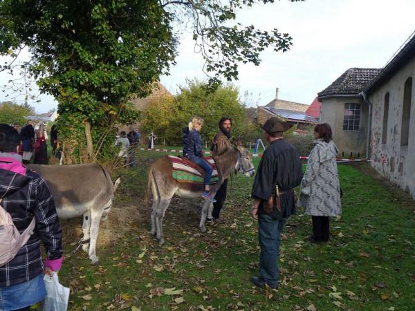 Lutherfest Neuendorf - Auch die Esel waren da