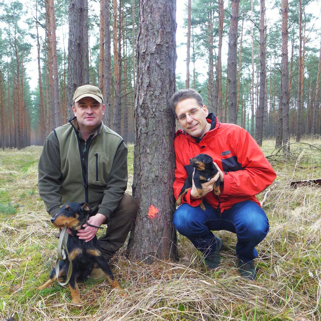 Geheimnis um die roten Punkte mit Jagdterrierwelpen Kautz von Planetal