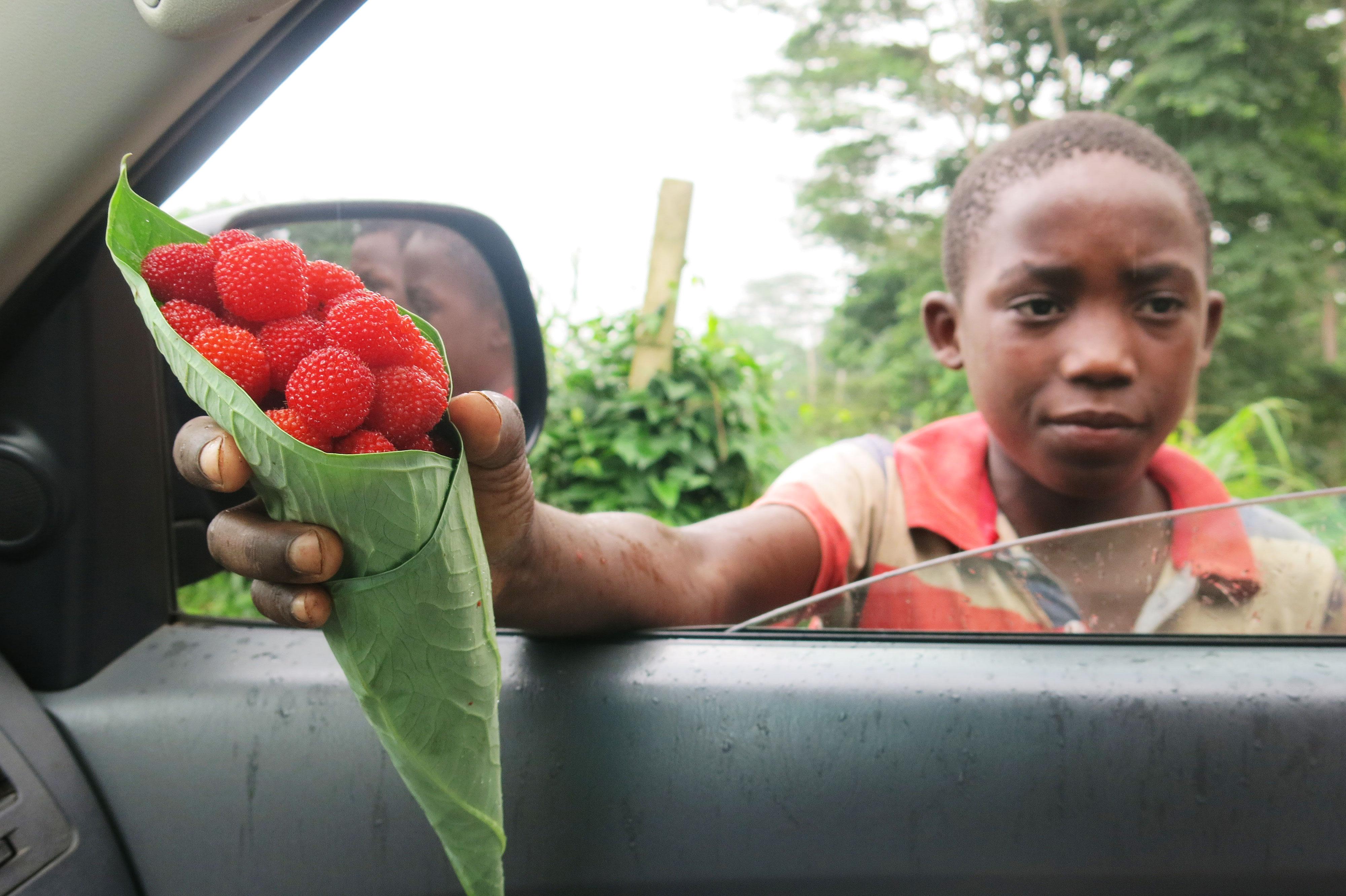 São Tomé und Príncipe - Reisebericht von Pfarrer Danner beim Gemeindenachmittag
