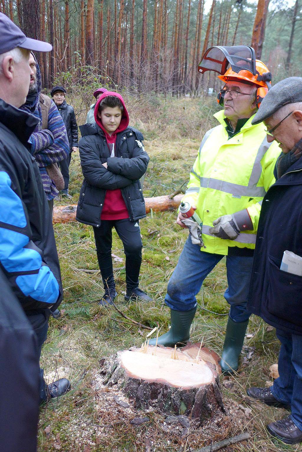 Henkel Paul erzählt die Geschichte des Baumes - Holzfällen an St. Thomas im Kirchenwald Neuendorf