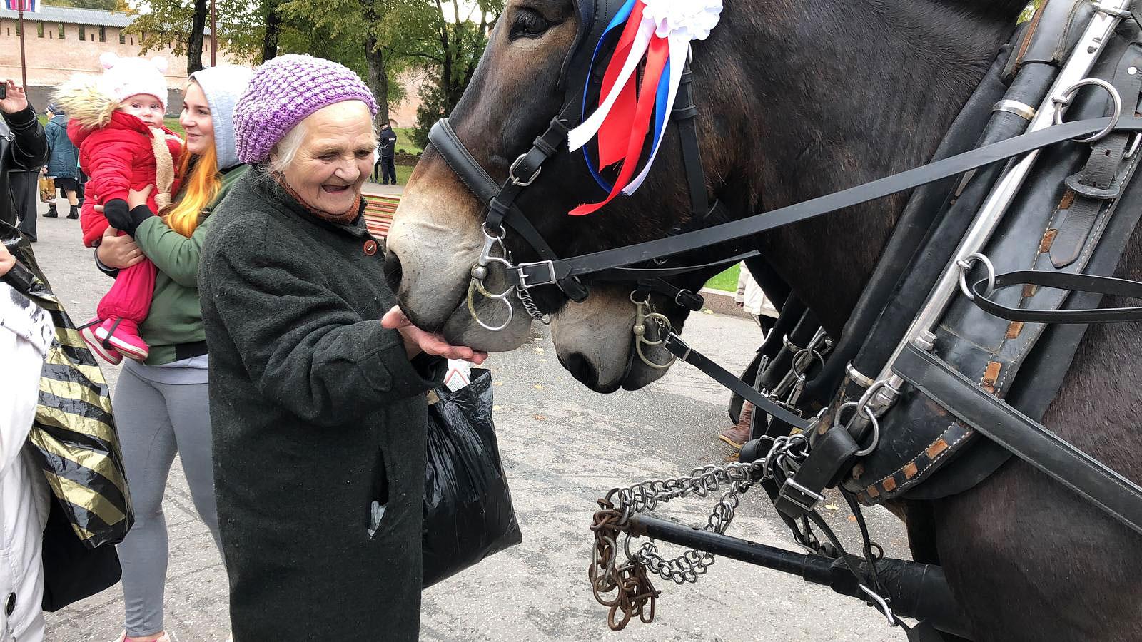 Mulis ziehen an - Titanen on tour in Weliki Nowgorod