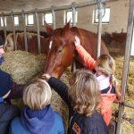 Grundschüler auf den Spuren vom Treck - Titanen on tour